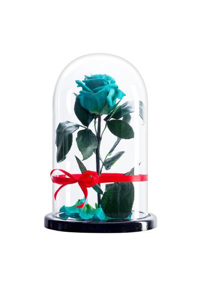 Роза в колбе, колба Premium, бутон 6 см, тиффани
