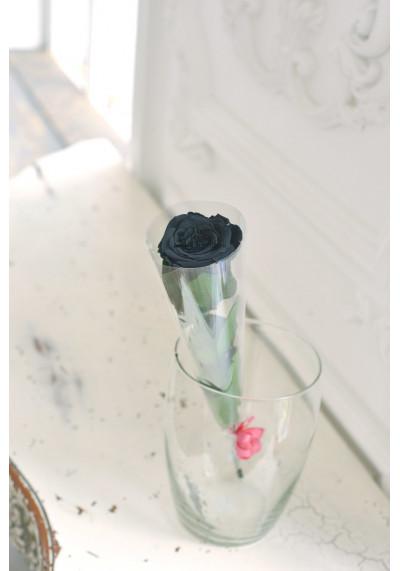 Стабилизированная роза на стебле, бутон 6 см, черная
