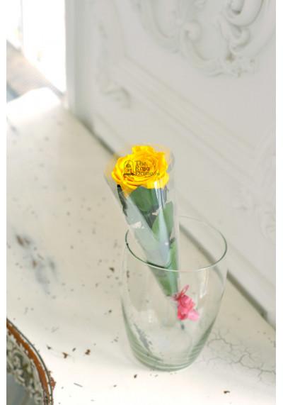 Стабилизированная роза на стебле, бутон 6 см, желтая
