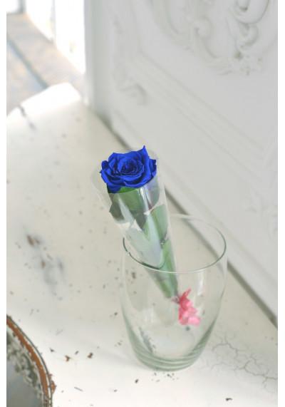 Стабилизированная роза на стебле, бутон 6 см, синяя