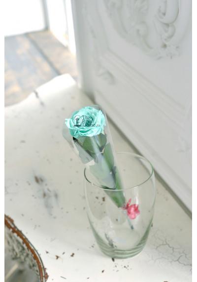 Стабилизированная роза на стебле, бутон 6 см, тиффани