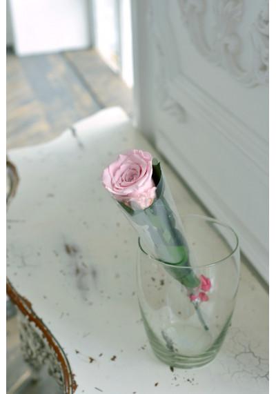 Стабилизированная роза на стебле, бутон 6 см, нежно-розовая