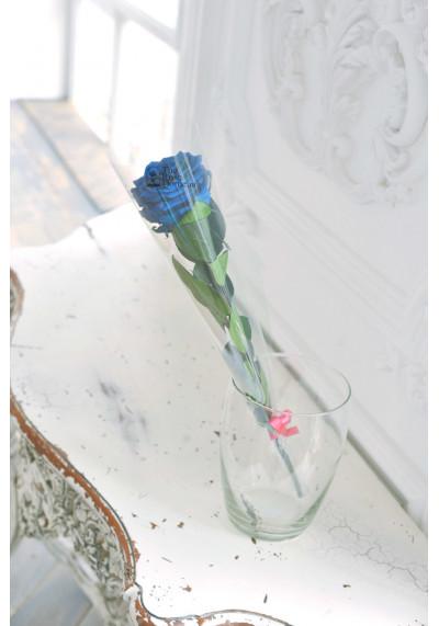 Стабилизированная роза на стебле, бутон 8 см, синяя