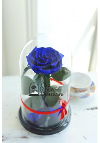 Роза в колбе, колба Premium бутон 11 см (бонита), темно-синяя