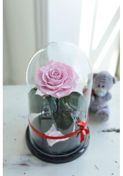 Роза в колбе, колба Premium бутон 11 см (бонита), нежно-розовая