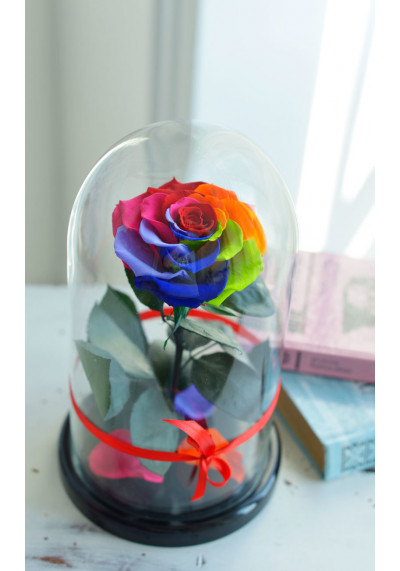 Роза в колбе, колба Premium бутон 11 см (бонита), радужная
