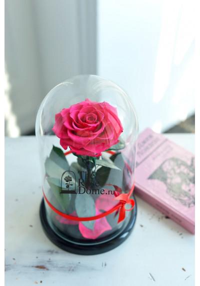 Роза в колбе, колба Premium бутон 11 см (бонита), фуксия