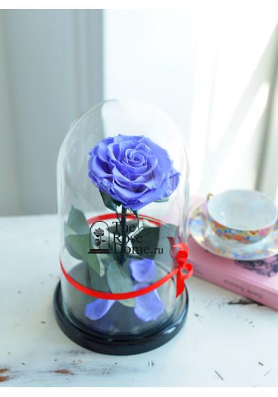 Роза в колбе, колба Premium бутон 11 см (бонита), сиреневая