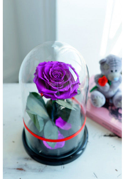 Роза в колбе, колба Premium бутон 11 см (бонита), фиолетовая