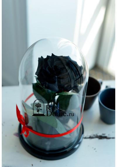 Роза в колбе, колба Premium бутон 11 см (бонита), черная