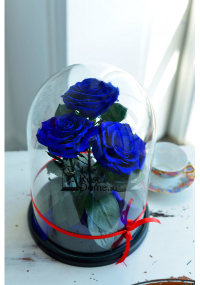 Роза в колбе ТРИО, колба King, бутон 11 см (бонита), темно-синяя