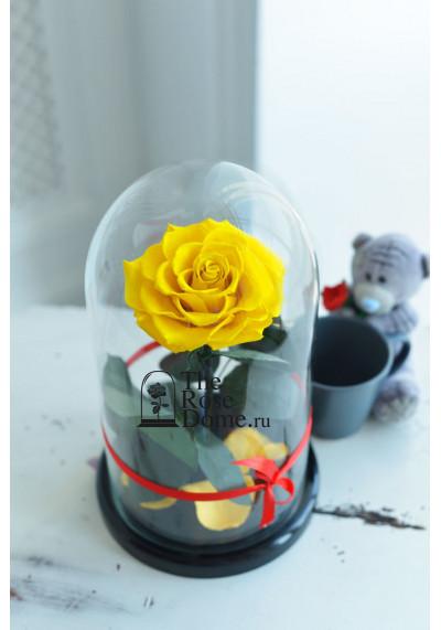 Роза в колбе, колба Premium бутон 11 см (бонита), желтая