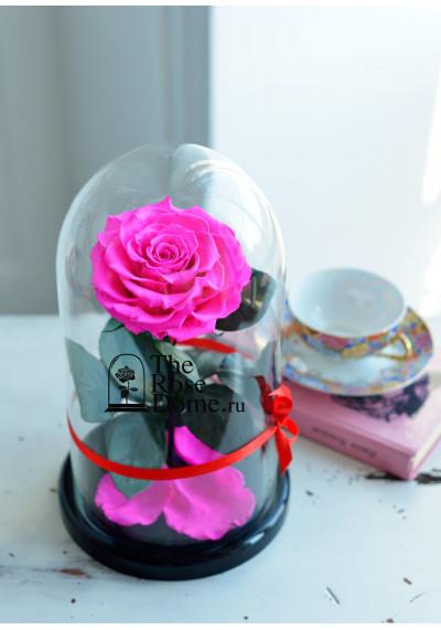 Роза в колбе, колба Premium бутон 11 см (бонита), ярко-розовая