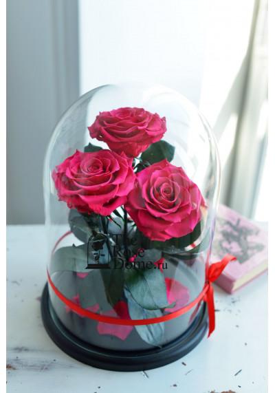 Роза в колбе ТРИО, колба King, бутон 11 см (бонита), фуксия