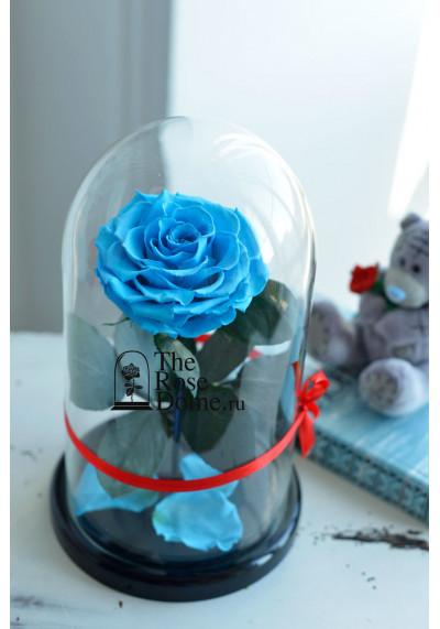 Роза в колбе, колба Premium бутон 11 см (бонита), голубая