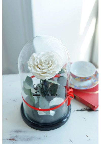 Роза в колбе, колба Premium бутон 11 см (бонита), белая
