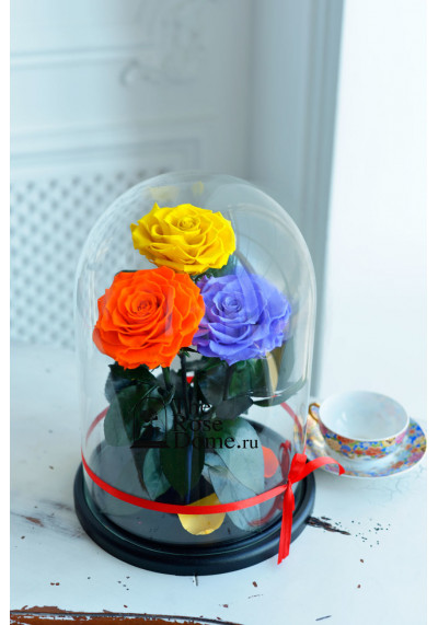 Роза в колбе ТРИО, колба King, бутон 11 см (бонита), мультиколор