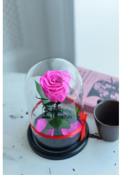 Роза в колбе, колба Mini, бутон 6 см, ярко-розовая