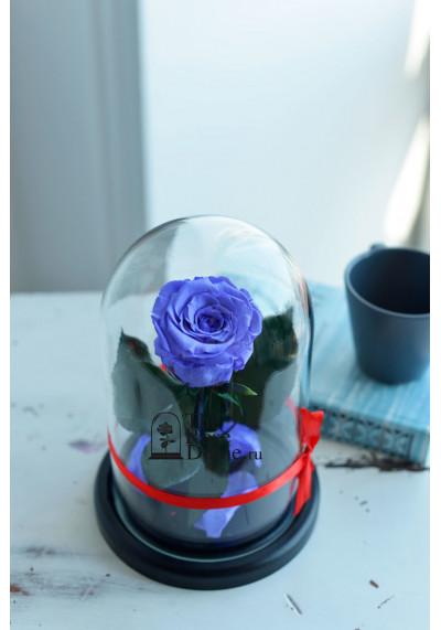Роза в колбе, колба Mini, бутон 6 см, сиреневая