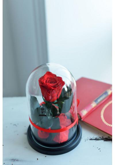 Роза в колбе, колба Mini, бутон 6 см, красная