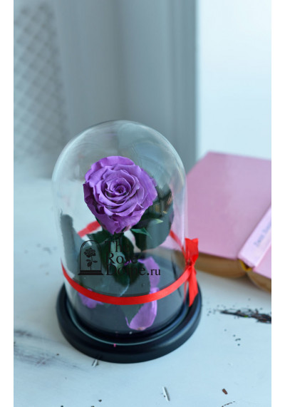 Роза в колбе, колба Mini, бутон 6 см, лиловая