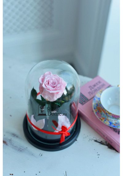 Роза в колбе, колба Mini, бутон 6 см, нежно-розовая