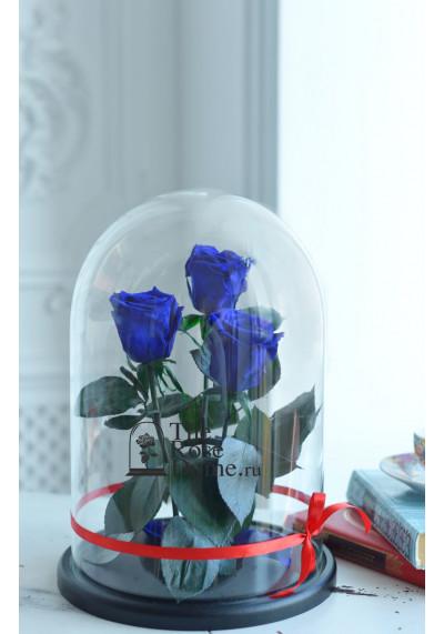 Роза в колбе ТРИО, колба King, бутон 6 см, темно-синяя