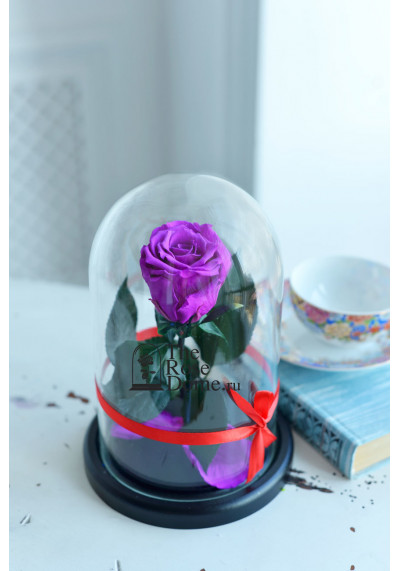 Роза в колбе, колба Mini, бутон 6 см, фиолетовая
