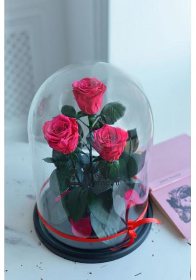 Роза в колбе ТРИО, колба King, бутон 6 см, фуксия