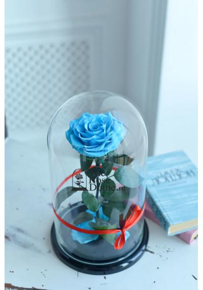 Роза в колбе, колба King, бутон 12 см, голубая