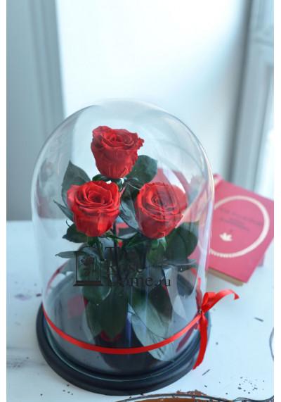 Роза в колбе ТРИО, колба King, бутон 6 см, красная