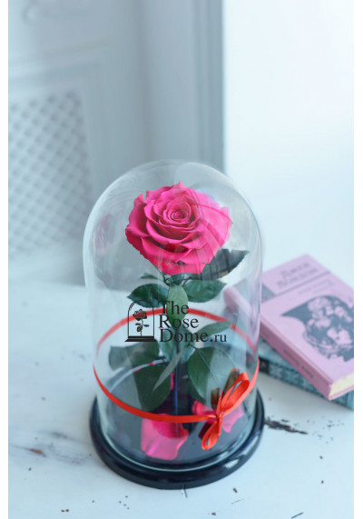 Роза в колбе, колба King, бутон 12 см, фуксия