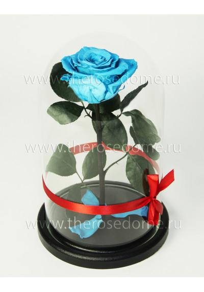 Роза в колбе, колба Premium, бутон 8 см, голубая