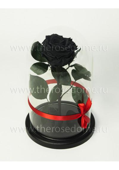 Роза в колбе, колба Premium, бутон 8 см, черная
