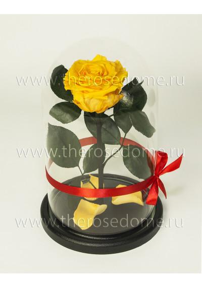 Роза в колбе, колба Premium, бутон 8 см, желтая