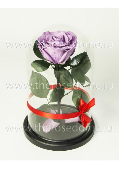 Роза в колбе, колба Premium, бутон 8 см, сиреневая