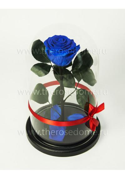 Роза в колбе, колба Premium, бутон 8 см, темно-синяя